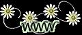 http://chatdecouverte.canalblog.com/
