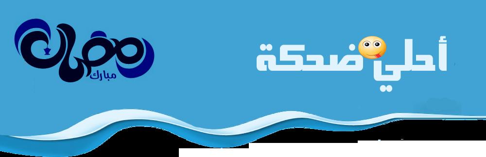 شركات الشحن الدولى - egyptian shipping