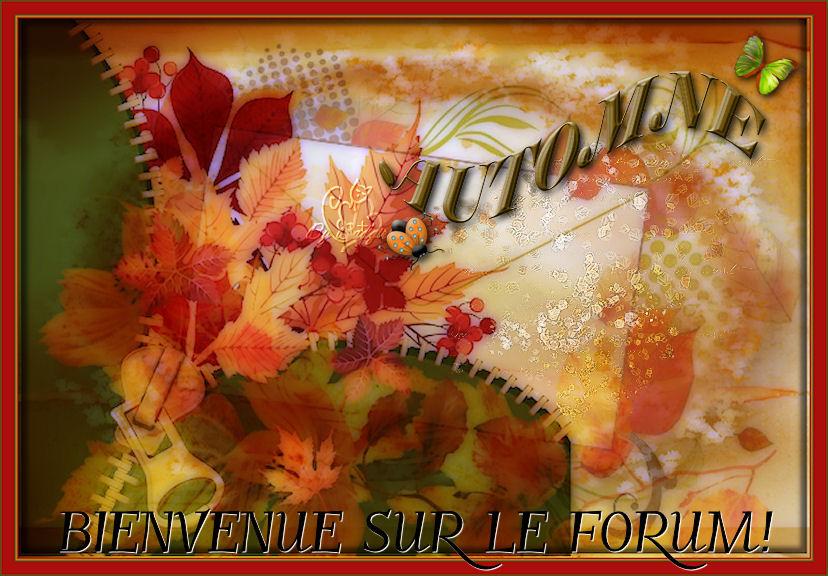 LE SOURIRE DE L ANGE JEZALEL