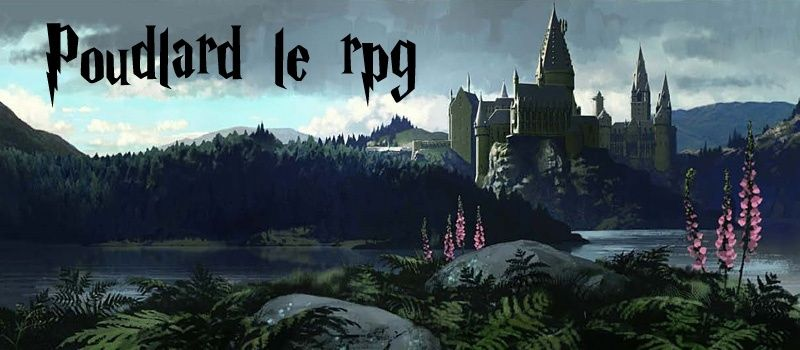 Harry Potter jeu de rôle.