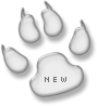Nieuwe berichten [ Populair ]