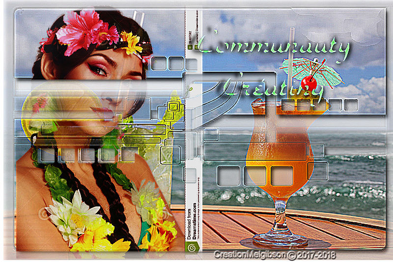 Communauty Creation PSP