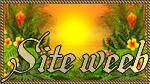 http://les-news-du-jour.forumactif.com
